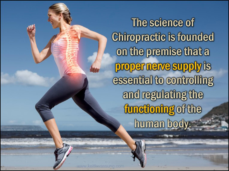 Chiropractic And Sports In Dallas Ga Chiropractic Wellness By Dr George